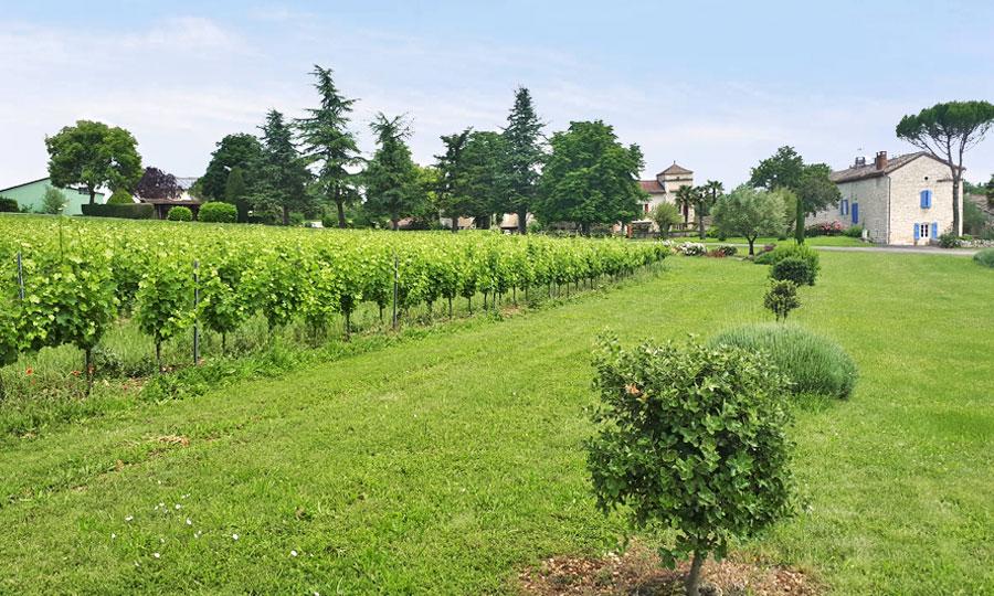 Domaine Gayrard - Vins de Gaillac
