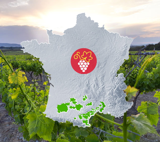 Vineyards of Occitanie - Wines, vines and winegrowers of the South-West and Languedoc Roussillon