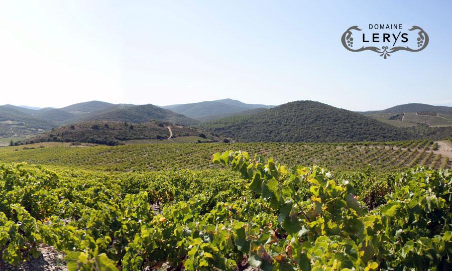Domaine Lérys - Vins de Fitou