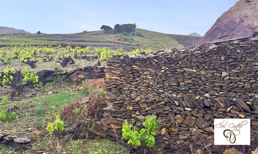 Clos Castell - Vins de Collioure et Banyuls