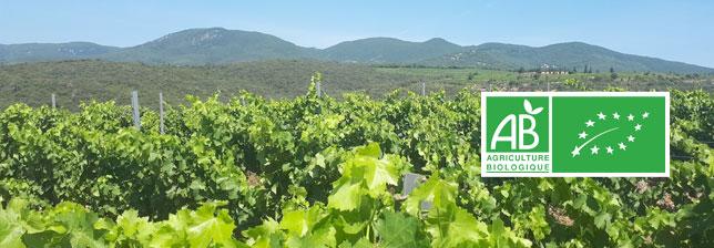 Vignobles d'Occitanie certifiés bios - Mas Onésime - Faugères