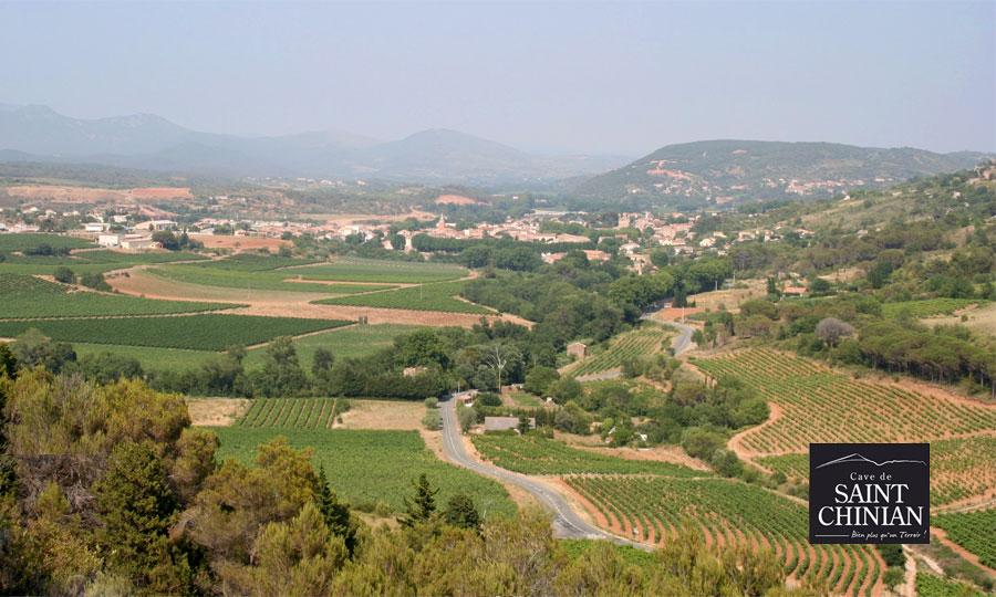 Vignoble de Saint Chinian
