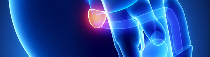 Tadalafil para la hiperplasia benigna de próstata.
