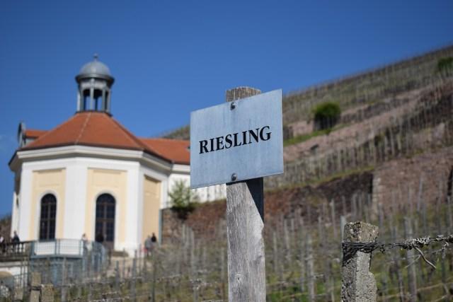 Riesling Schloss Wackerbath