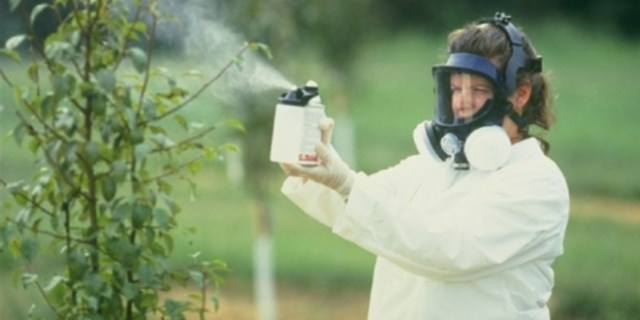 foto-1-pesticide