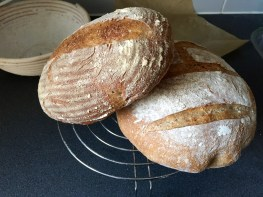 Bread-Blog - 13 of 20