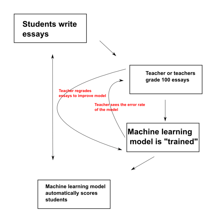 automated essay scoring programs Approaches to scoring, such as automated essay scoring (aes) systems, and   of writing tools and programs, encapsulating nearly every stage of writing, from.