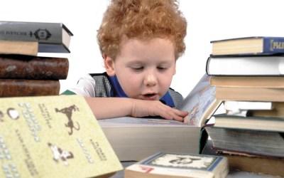 Что такое экстернат и каково в нем учиться детям-билингвам
