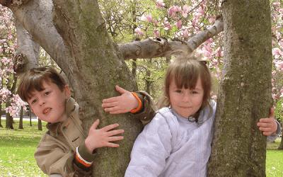 6 вопросов о раннем развитии