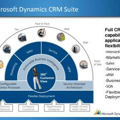 Crm Workflow Diagram Labelled Of Entamoeba Histolytica Microsoft Dynamics