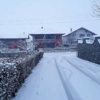 NAŠIM SOKACIMA I ULICAMA: Zimska idila u predvečerje (foto)