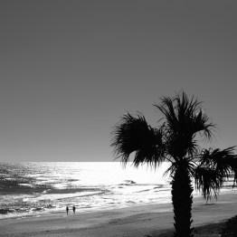 Sun reflected on the Atlantic, Ormond Beach, FL