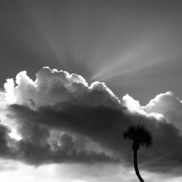 All of the weather at once, Ormond Beach, FL