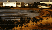 Beachfront from La Siesta Motel, Djibouti - 1975