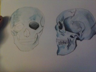 skull_watercolour