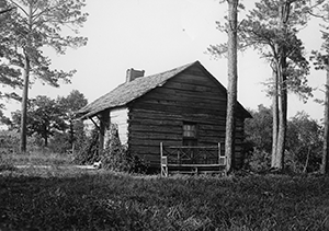 Cabin in the Pines, early 1900s