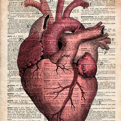 The Viking Heart Within
