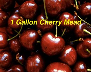 1 gallon cherry mead