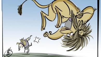 Matt Engstrom Vikings Illustrations Vikings Give Lions The Boot