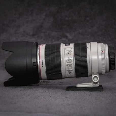 Canon 70-200 Pic1