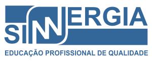 sinnergia-curso-treinamento-educacao-profissional-vikon-01