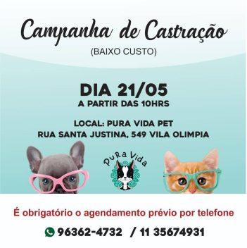 Castração de baixo custo para cães e gatos
