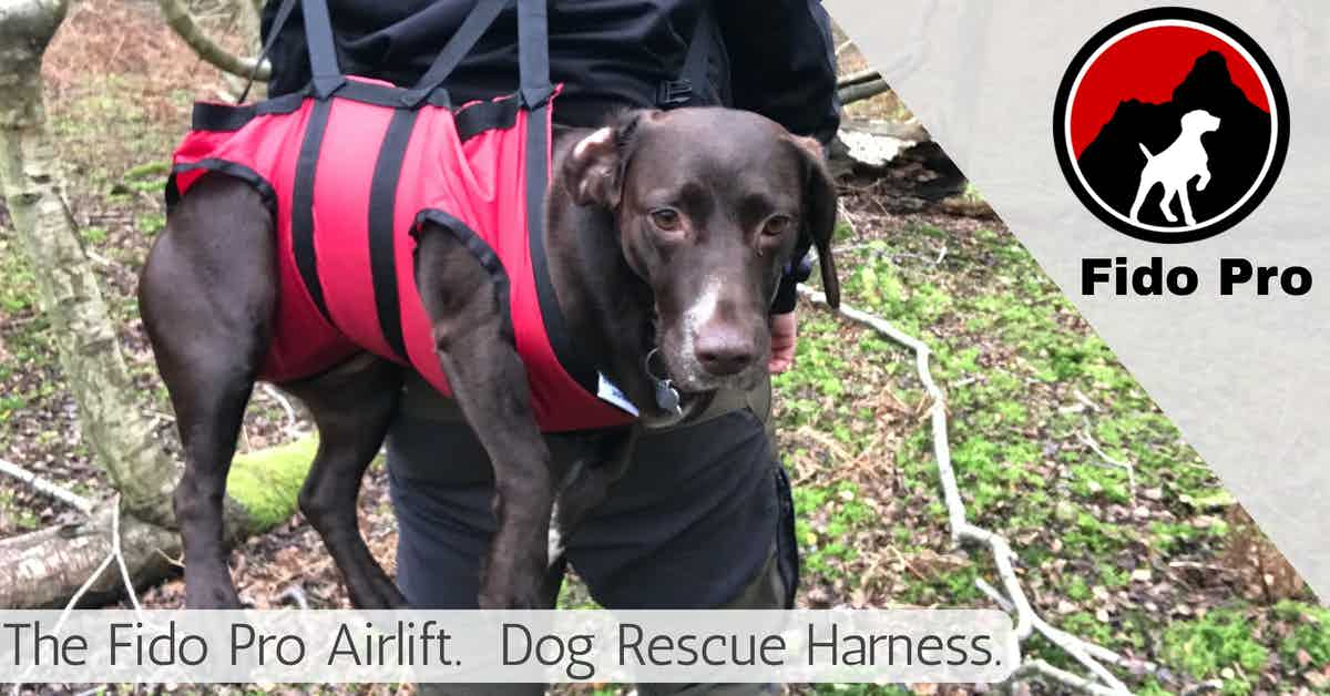 fido pro airlift dog rescue harness