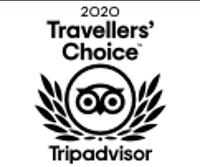 taveller_2020_tripadvisor
