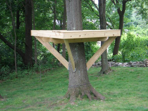 Simple Tree Platforms For Simple Tree House Platform Small Houses Cool Vtwctr