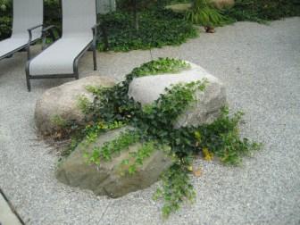 Landscape_Planting12