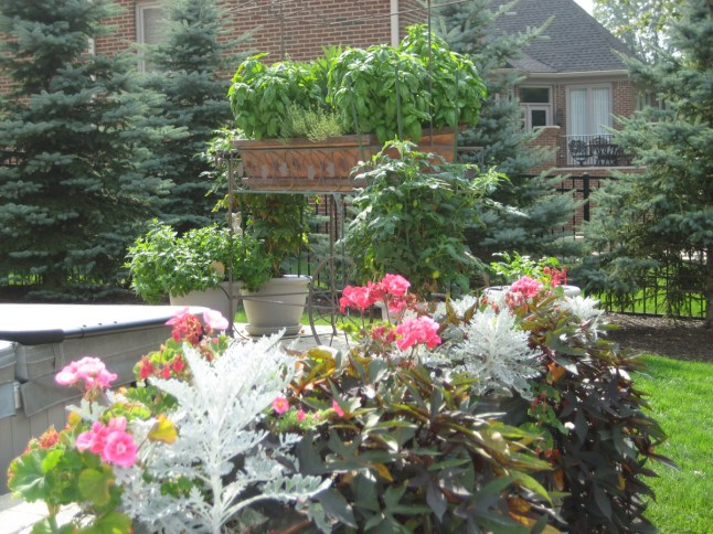 Landscape_Planting18