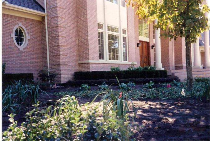Landscaping_Planting_and_bedding
