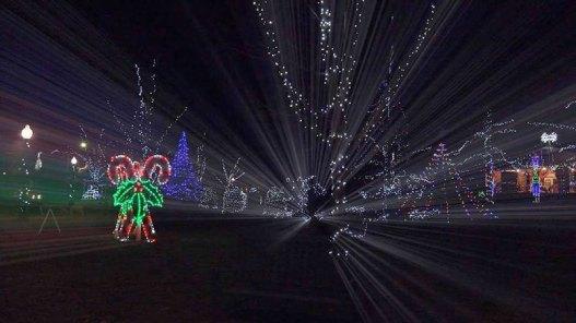 lightsinpark-xmas