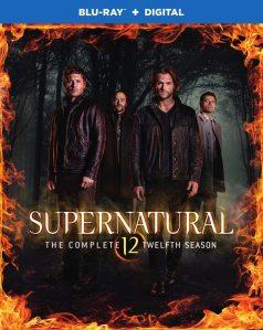Supernatural, Season 12, DVD