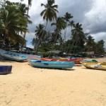 Barche Playa Las Ballenas - Villa Laura Las Terrenas