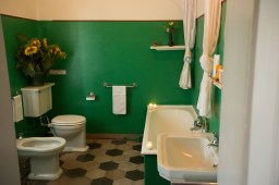 the-green-carpet-room-bathroom