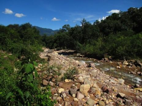 Arroyo Griton