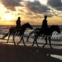Villa Estrella Horseback Riding