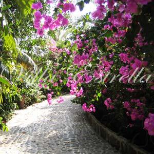 Villa Estrella Gardens