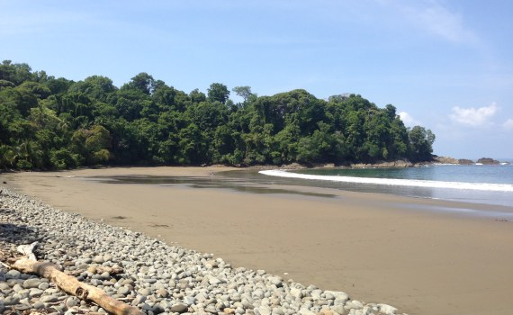 Playa pinuella osa costa rica