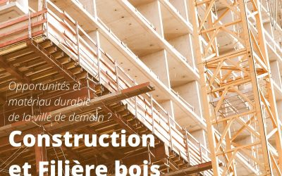 Construction et filière bois, un matériau en question