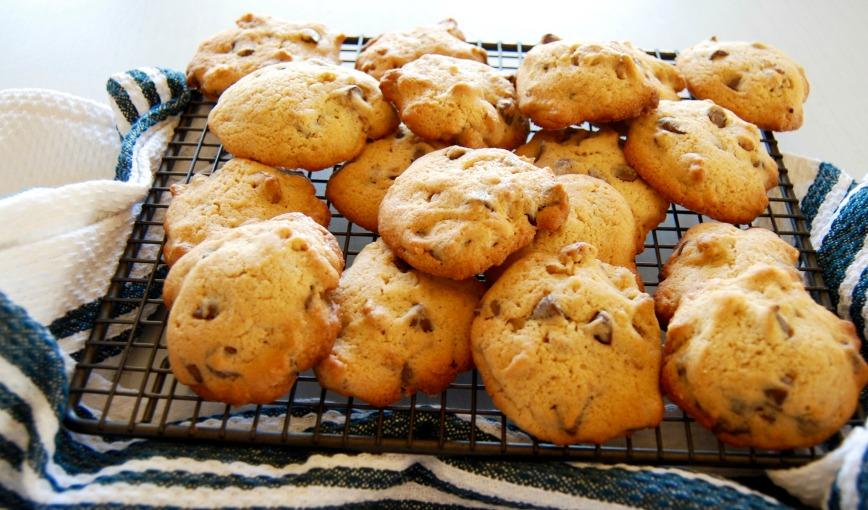 choc chip walnut cookies
