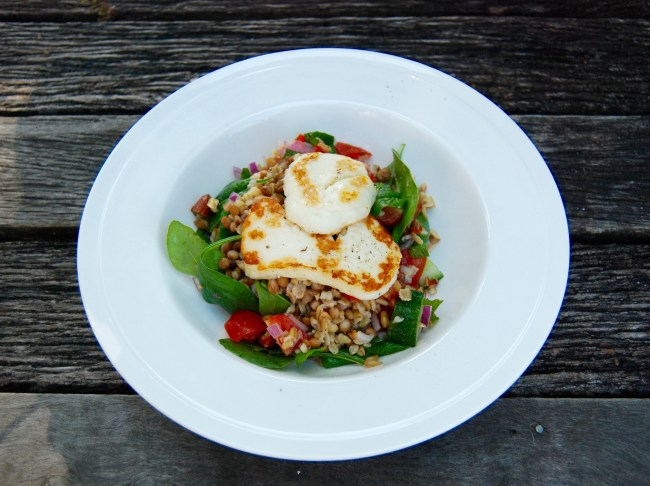 halloumi lentil and freekeh salad