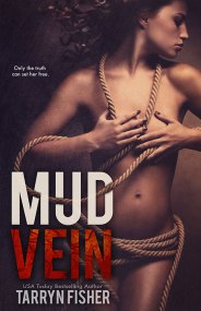 MudVein cover