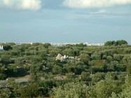 Blick von der Terrasse ins Umland