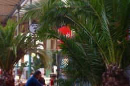 Burger unter Palmen