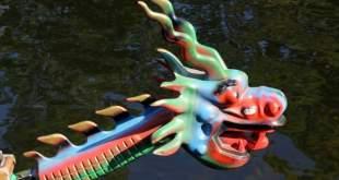 Drakonų valčių lenktynių festivalis