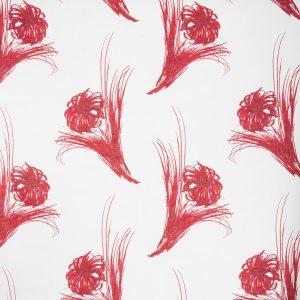 Tussikukka syvä punainen