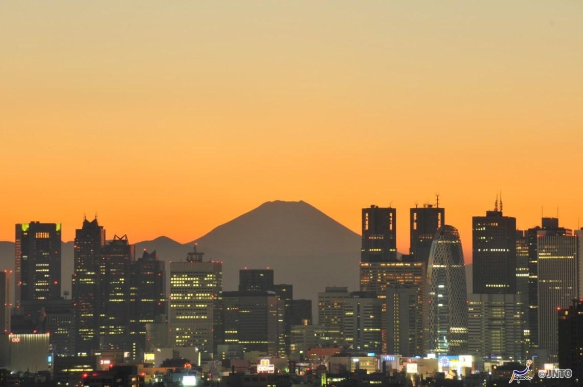 japanska städer - fuji över tokyo