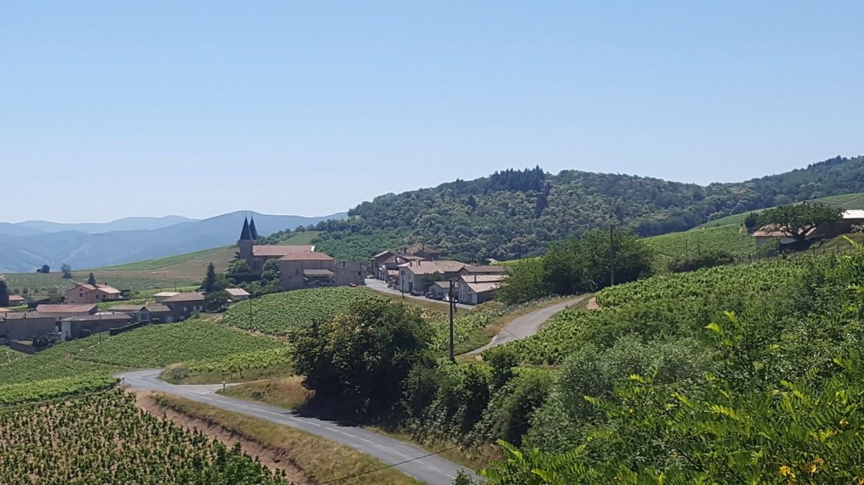 Village de Régnié depuis la terrasse de Chiroubles - Beaujolais